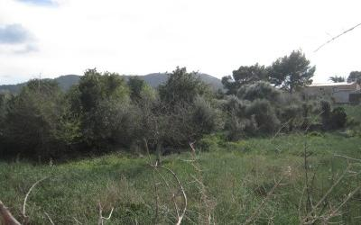 744986 - Plot For sale in Capdepera, Mallorca, Baleares, Spain