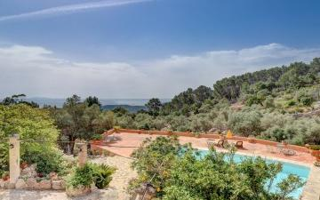 769264 - Working farm/vineyard For sale in Esporles, Mallorca, Baleares, Spain